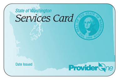 ProviderOne services card